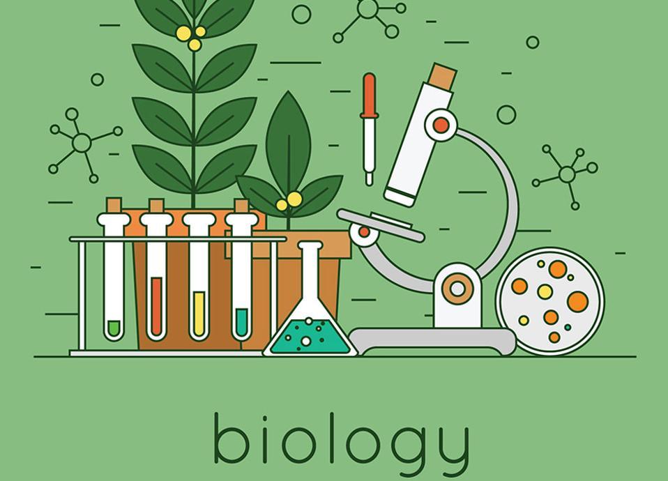 Ενημέρωση καθηγητών κλάδου ΠΕ04 σε εργαστηριακές δραστηριότητες Βιολογίας Γυμνασίου